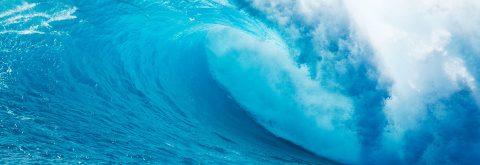 ¡Somos fluidos y adaptables, surfeamos la ola de cada cliente!